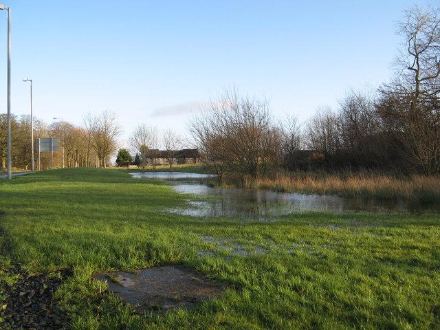 Stewartson Road after rain