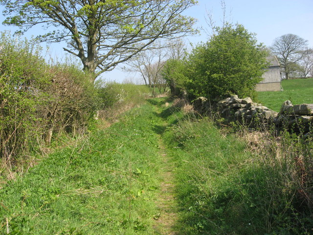 Bridleway near Chapel Farm