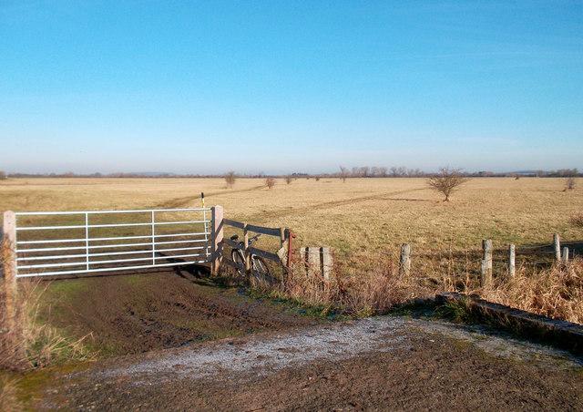 View of North East Otmoor
