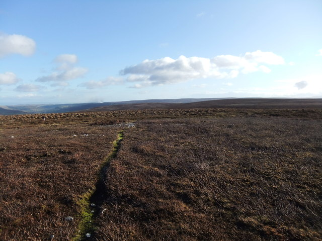Near the 578m spot height on Melbecks Moor