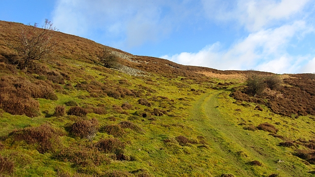 Path on Cottie Hill