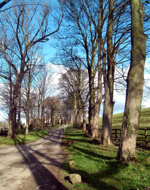 Lane leading up to the rear of Ledston Hall