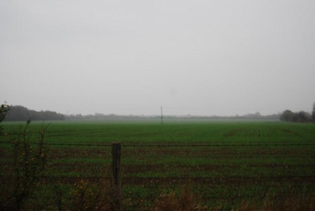 Farmland off Molehill Rd