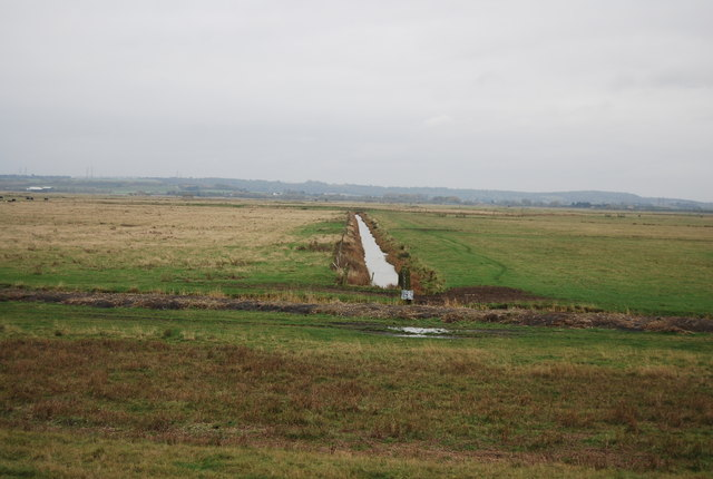 Drainage ditch, Cliffe Marshes