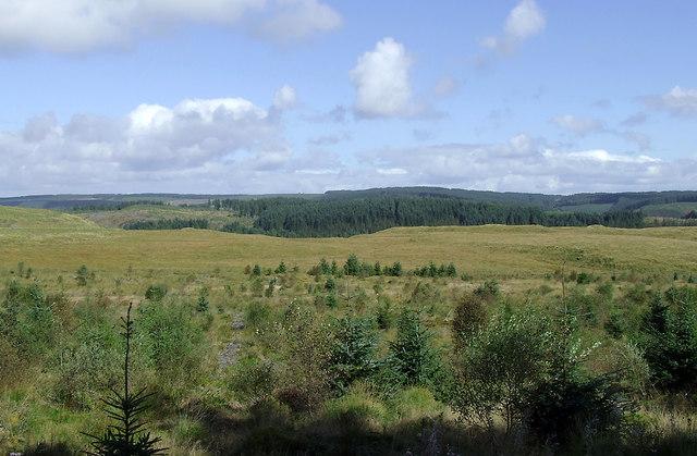 Elenydd moorland south-east of Soar-y-Mynydd, Ceredigion