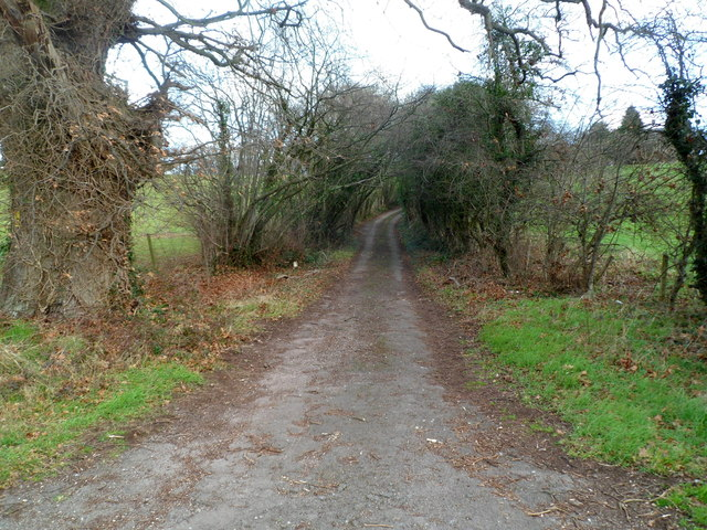Entrance road to Little Ancrehill Farm near Rockhill