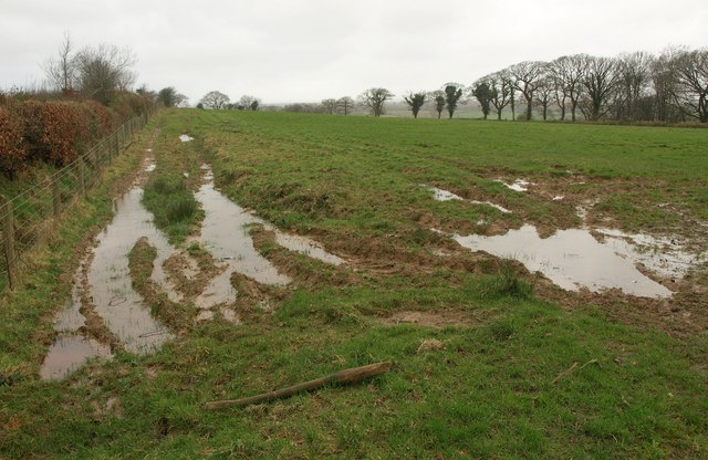 Muddy field, Narraton
