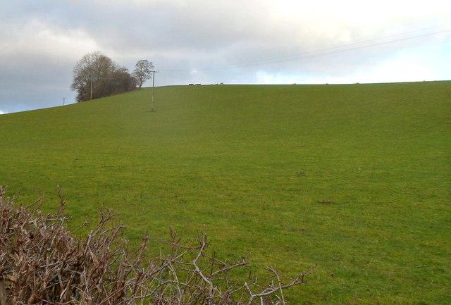 Sloping field near Rockfield