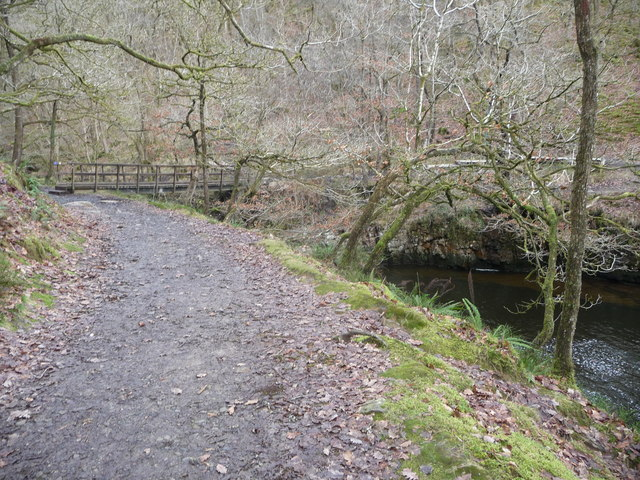Wooden footbridge on the Waterfalls Walk