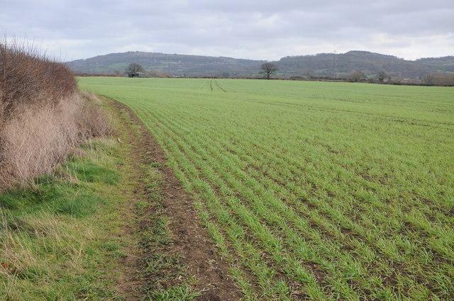 Arable land near Badgeworth
