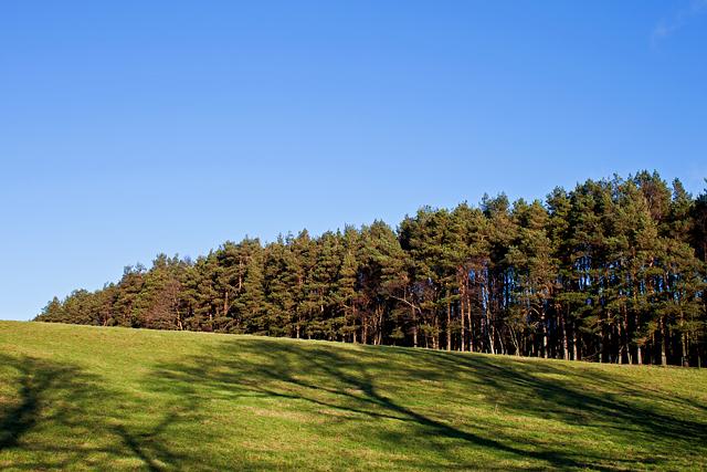 Farmland near Aberdona Mains