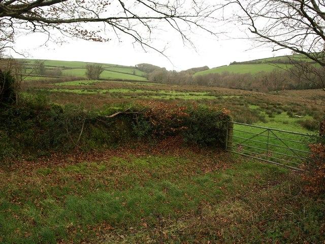 Field entrance by Dry Lane