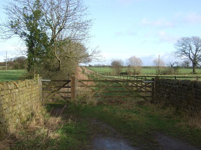Bridleway off Pye Lane