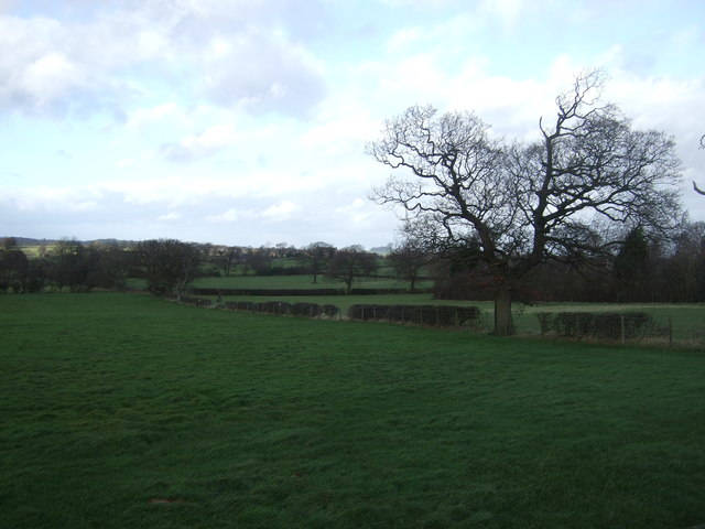 Farmland, Fern House Farm