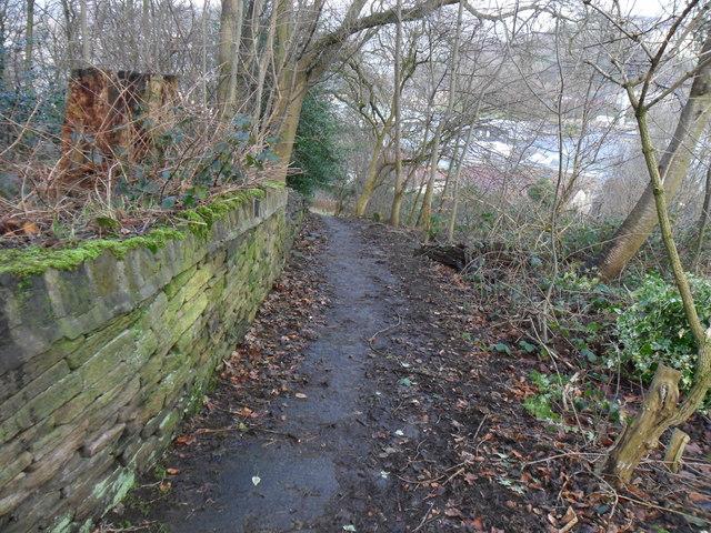 Footpath, Martin Bank Wood