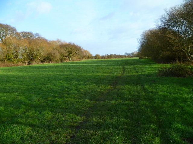 Field footpath south of Marsh Farm