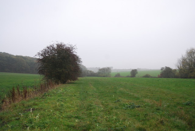 Footpath along the field edge