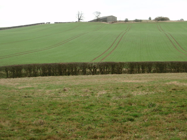 Arable land near Bushycommon Wood