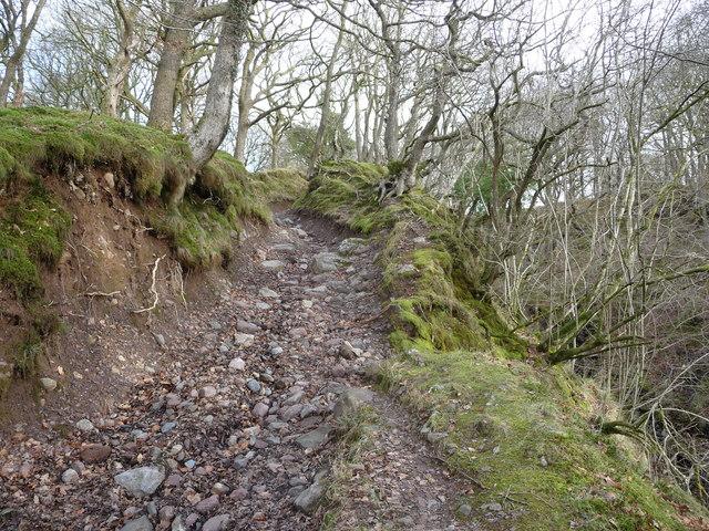 Steep path above Pont Rhyd-y-cnau
