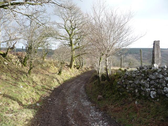 Path near Bryn-bwch farm