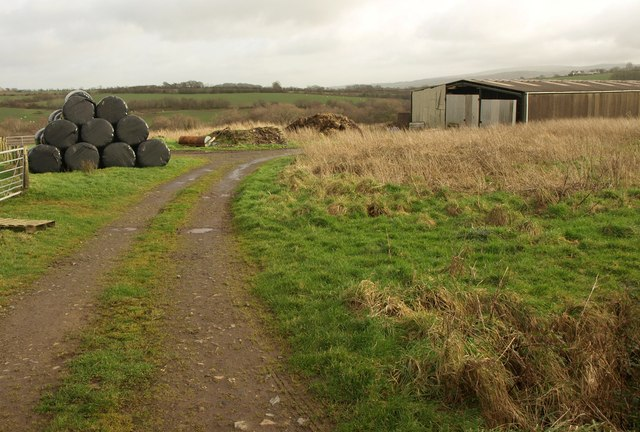 Bales and barn, Northlew Road