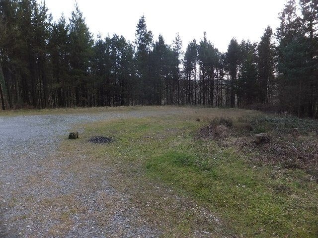 Open space for forestry operations in Haldon