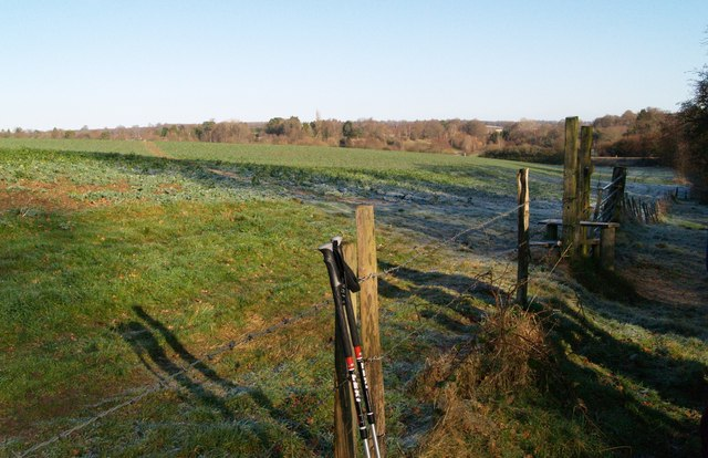 Barbed wire fence and stile
