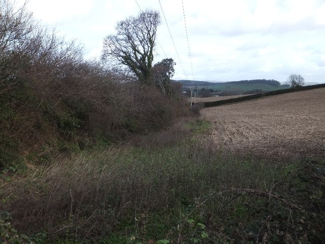 Scrub and hedge in a valley by Langdon Road