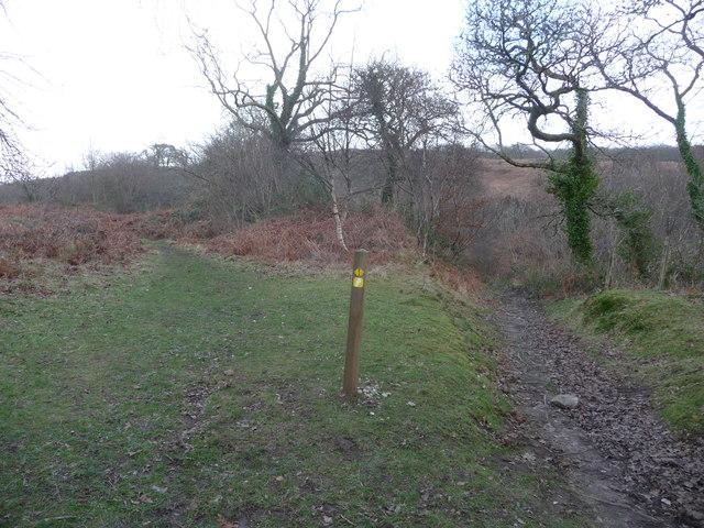 Path junction on Craig y Ddinas above Pontneddfechan