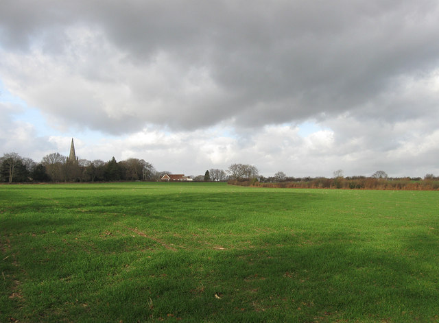 Scroggins Field