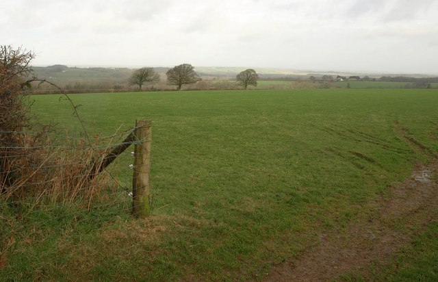 Field near Lambert Cross