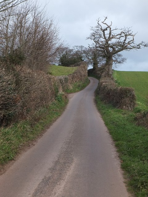 Minor road north of Basket Lodge