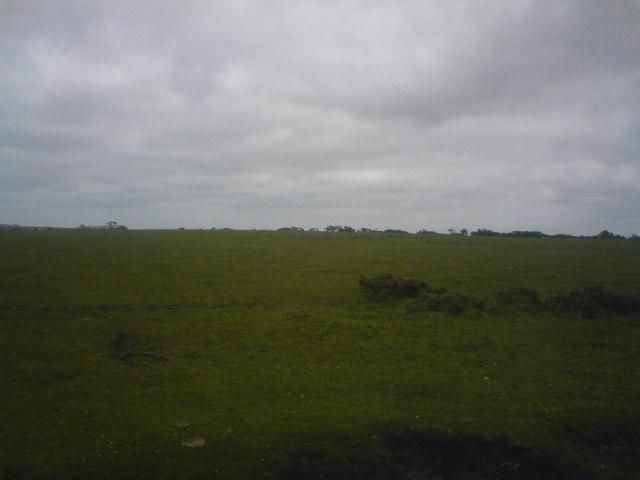 Hill on Letter Moor