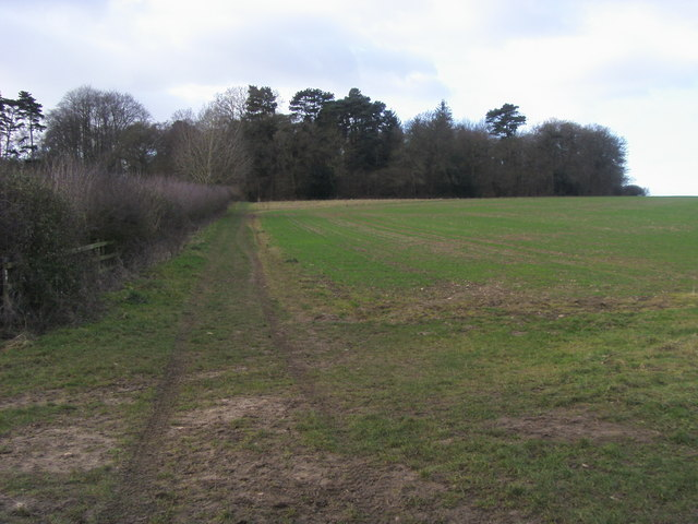 Footpath to Ramsden