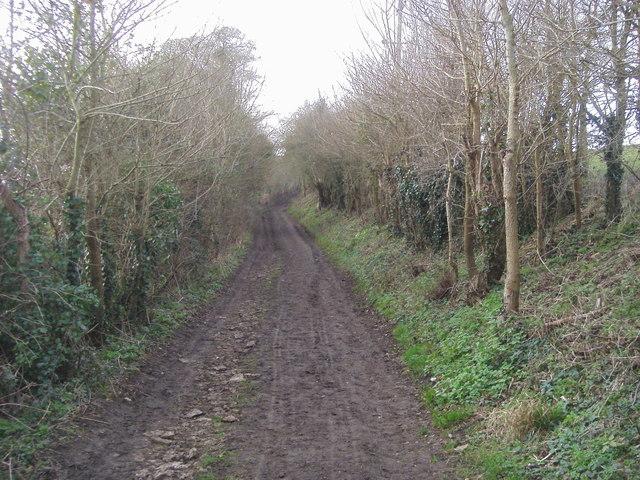 West Lane
