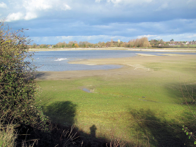 Low Water at Startops Reservoir January 2012