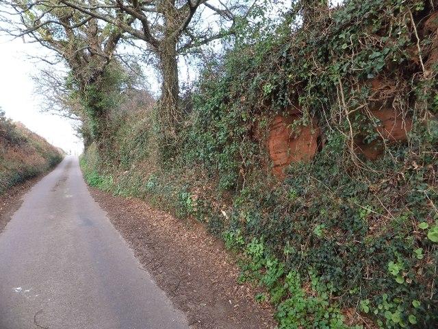 The side of the road near Brickhouse Farm