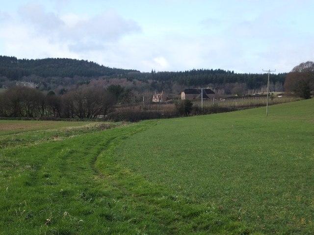 Footpath and stream near Mowlish