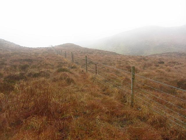 Fence, Na Maoilean