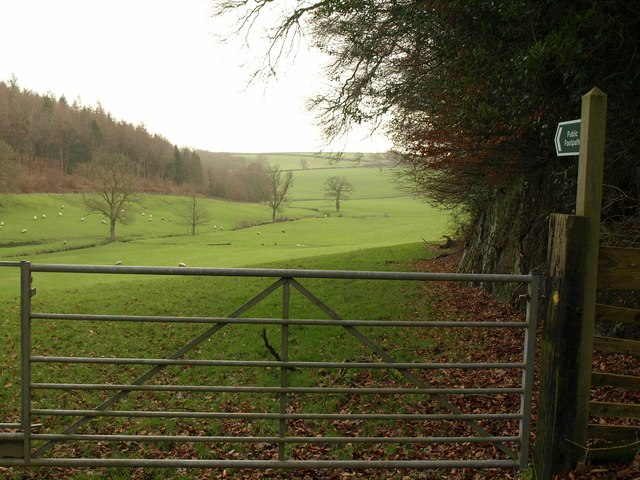 Lew valley