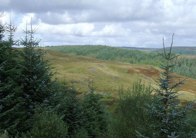 Elenydd moorland and Tywi Forest, Ceredigion