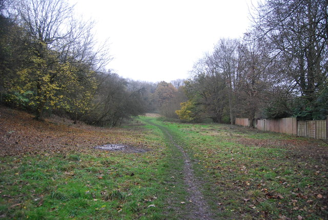 Muddy path in the Loose Valley