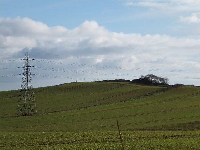 Fields and electricity pylon east of Mowlish Lane