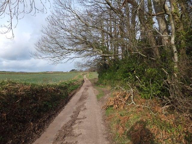 Minor road at the north end of Wood Brake