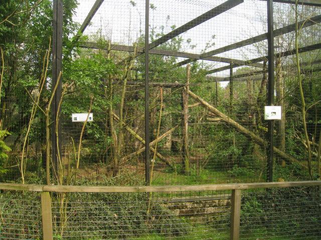 Owl enclosure - Linton Zoo