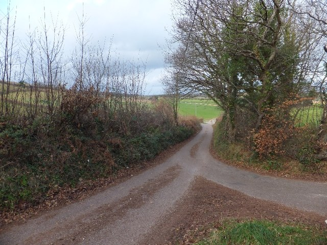 Minor road running north from Ivy Cottage Cross