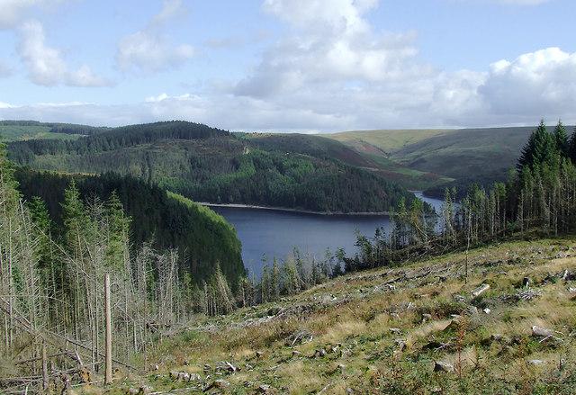 Forestry clear fell and Llyn Brianne, Ceredigion