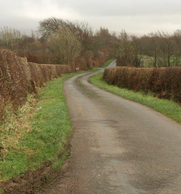 Lane to Thorndon Cross