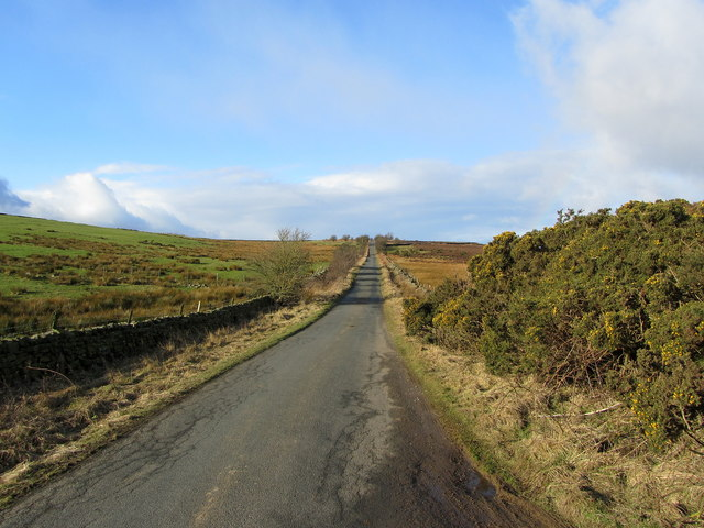 Road on Skelding Moor