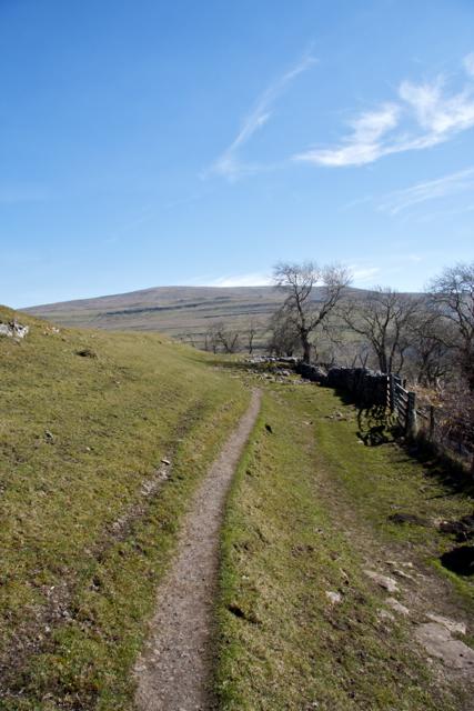 Path above Hubberholme in Langstroth Dale